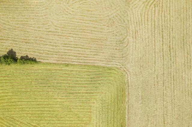El funcionamiento del Agromarketing Digital
